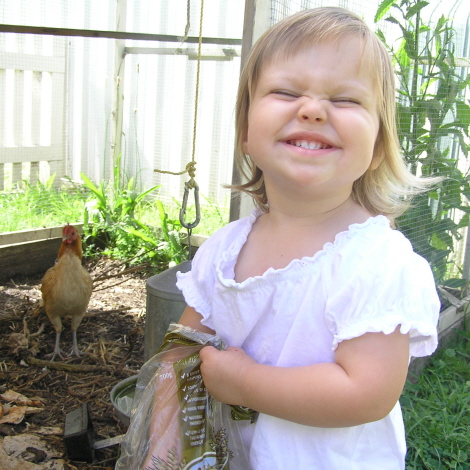 Olivia feeding the chooks 470 x 470 311208