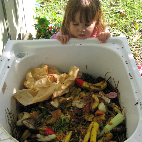 Layer of hay, then compost, then kitchen scraps