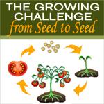 Seed2seed_challenge_150x