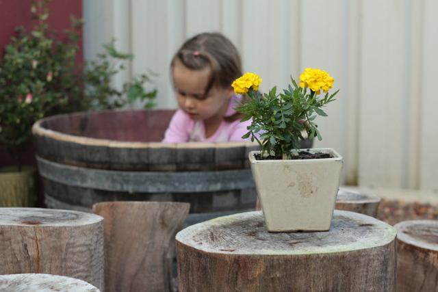 Natural backyard playground 1