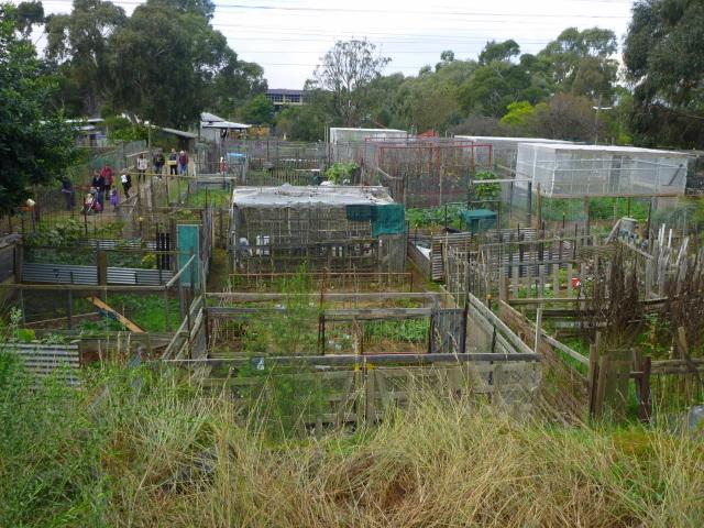 Ceres garden plots 1-1