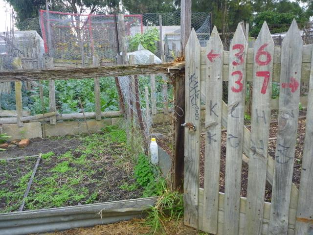 Ceres garden plots 2-1