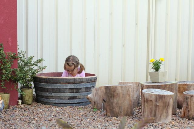 Natural backyard playground 2