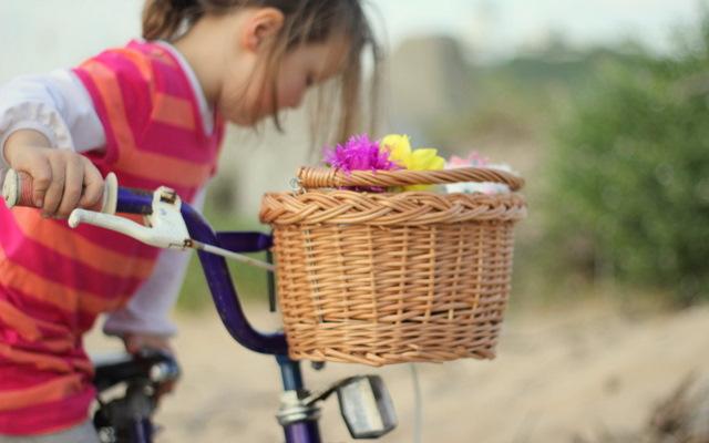 Bike basket 2