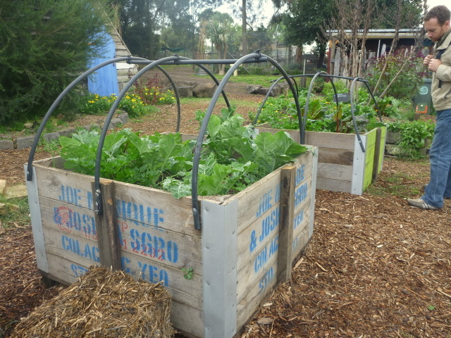 Raised garden bed inspiration ceres 3-1