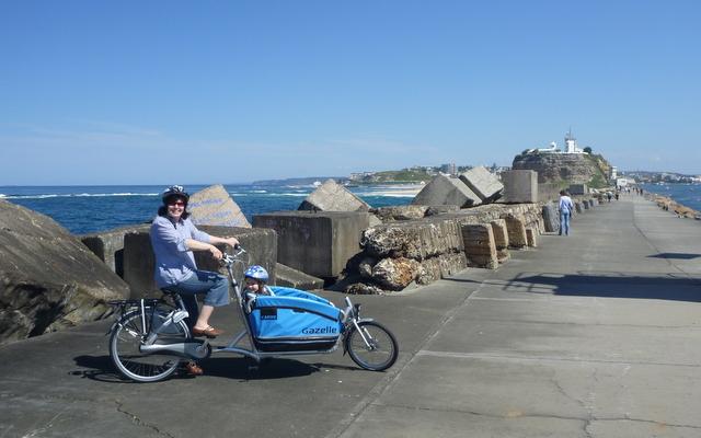 Gazelle_Cabby_cargo_bike