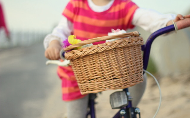 Bike basket 1