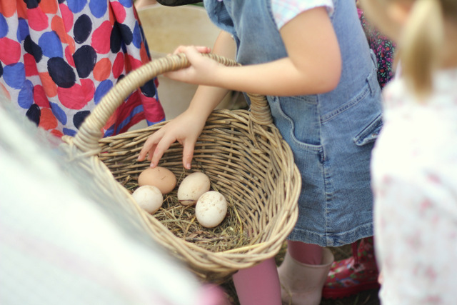 Farm birthday party collecting eggs
