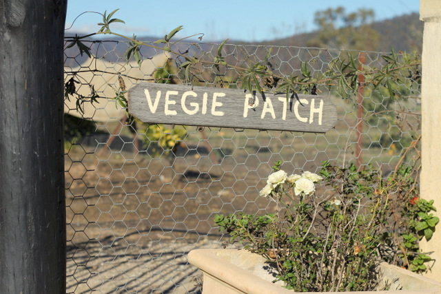 Margan Hunter Valley Vegie patch