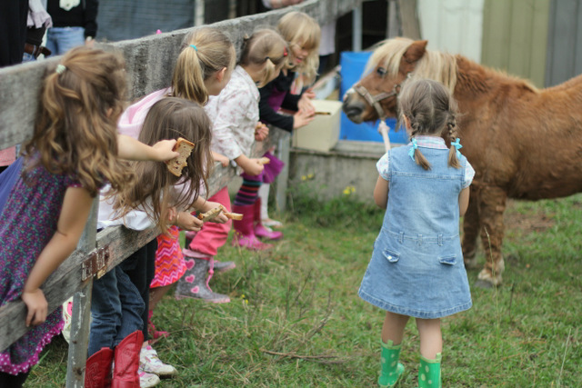 Farm birthday party feeding the pony
