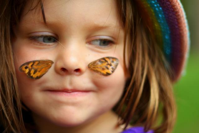 Wear butterfly wings