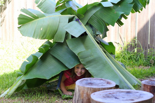 Banana leaf kids cubby