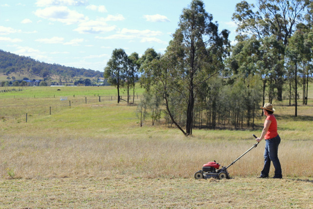 Mowing the front paddock