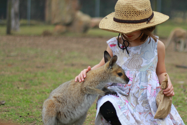 Hunter Valley Zoo 2