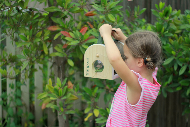Seedling My Nature Habitat by Eco Toys 2