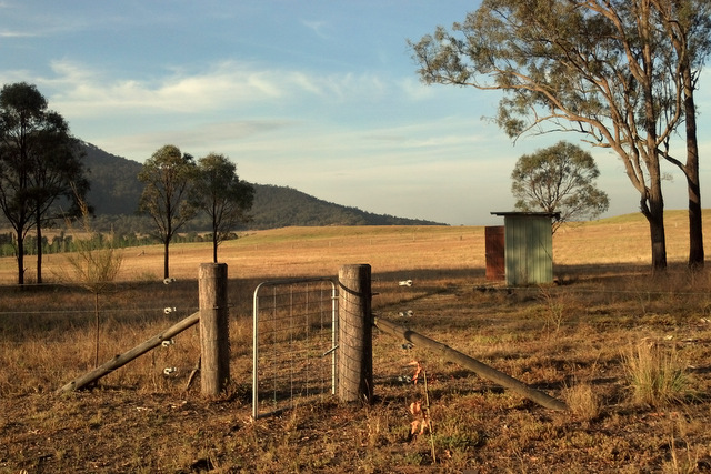 Spring 2012 dry back paddock Little eco footprints