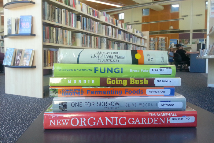 Some recently borrowed library books
