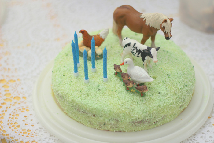 Simple farm party birthday cake