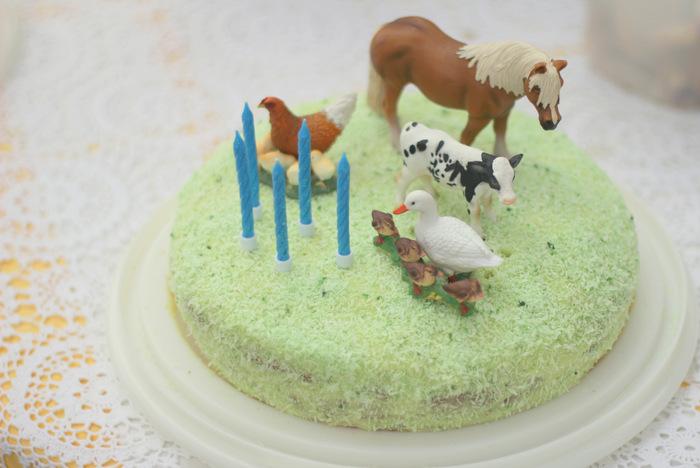 Simple farm party birthday cake