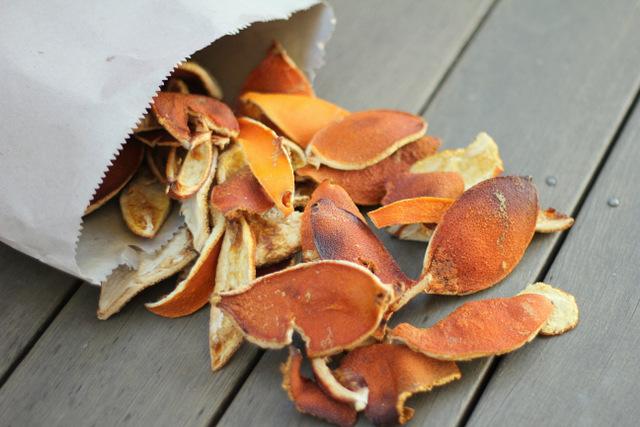 Dried orange peel fire starter