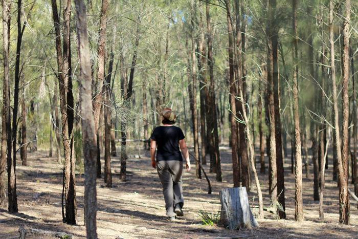 Forest Bathing Little eco footprints