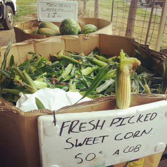 Roadside-stall-shopping-corn. Little eco footprints-002
