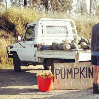 Roadside-stall-shopping-pumpkin. Little eco footprints-002
