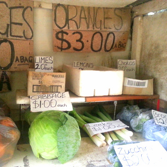 Roadside-stall-shopping-Tourist Route33-2. Little eco footprints