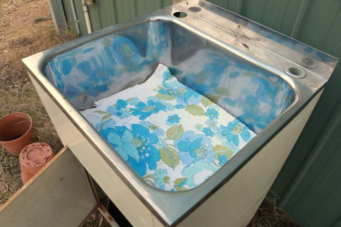 How-to-make-a-worm-farm-in-an-old-laundry-tub-little eco footprints 4