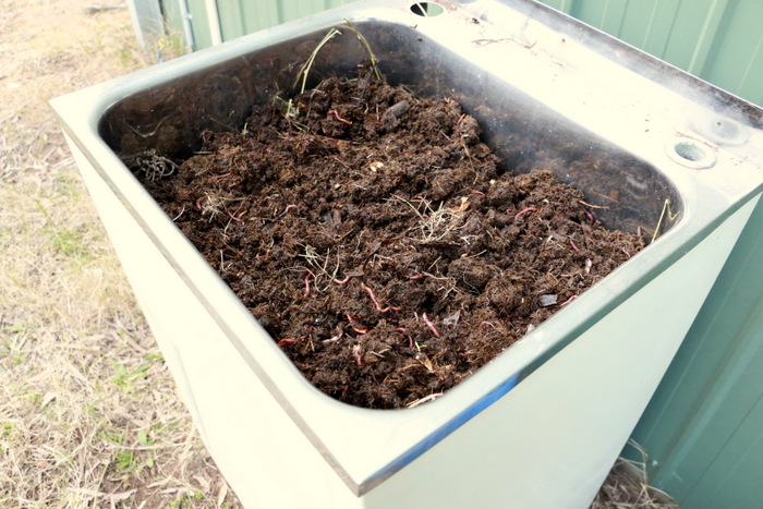 How-to-make-a-worm-farm-in-an-old-laundry-tub-little eco footprints 6