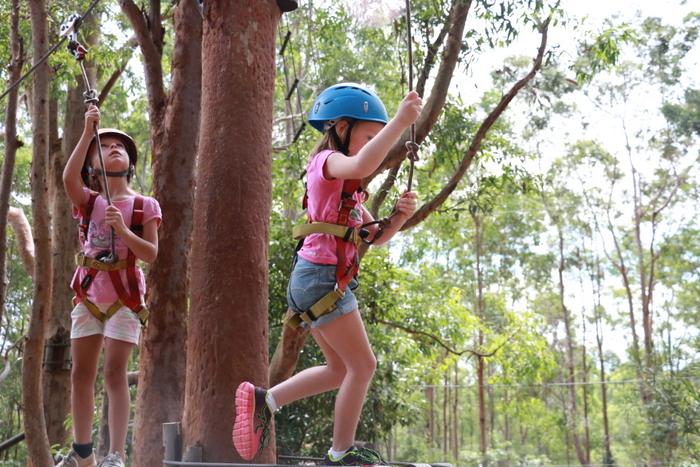 Treetops Adventure Park Newcastle 2. Little eco footprints