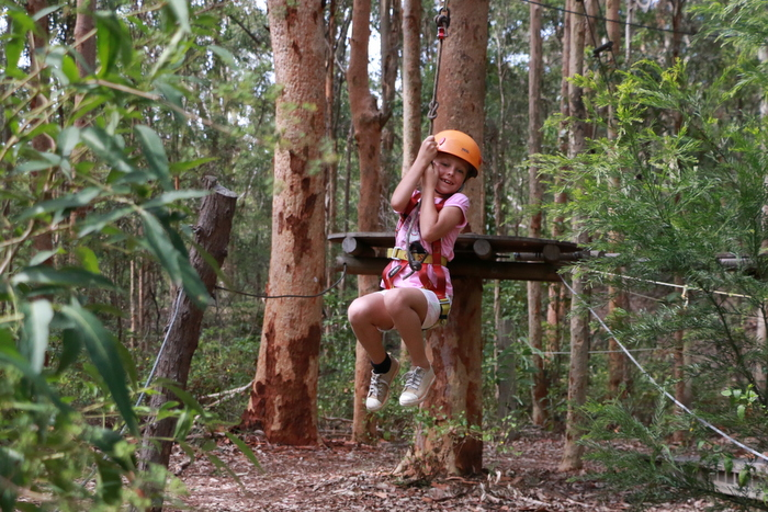 Treetops Adventure Park Newcastle 4. Little eco footprints