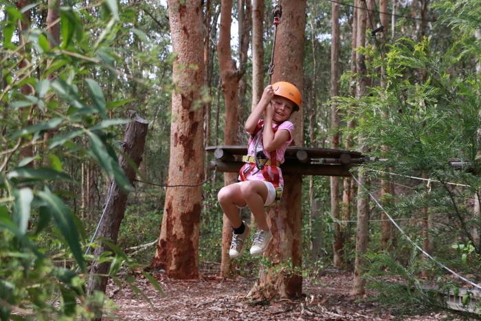 Treetops Adventure Park Newcastle 4. Little eco footprints