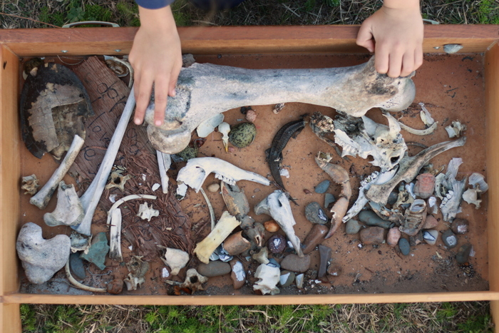 Nature-drawer-mess-milkwood and little eco footprints