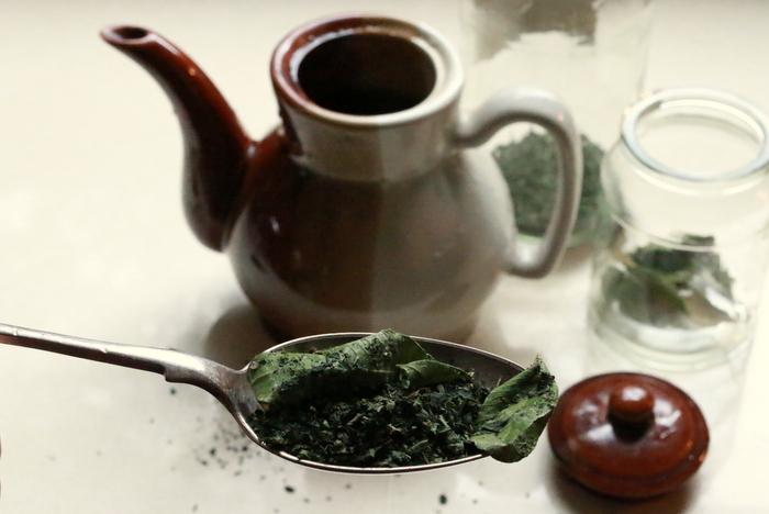 Dried Lemon Myrtle and Nettle tea. Little eco footprints