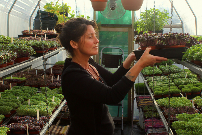 Elle Brown in her backyard microgreen farm. Photo Tallulah Brown-w