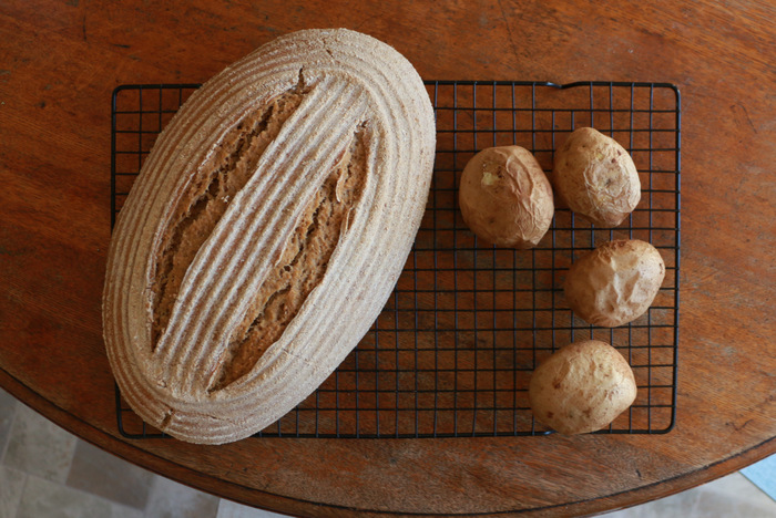 Simple living lessons from sourdough. Experimentation brings rewards. Little eco footprints