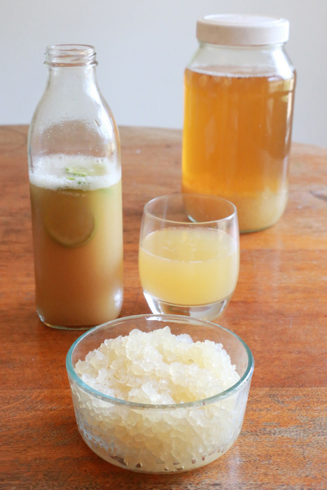 How to make water kefir. Recipe and tips. Little eco footprints
