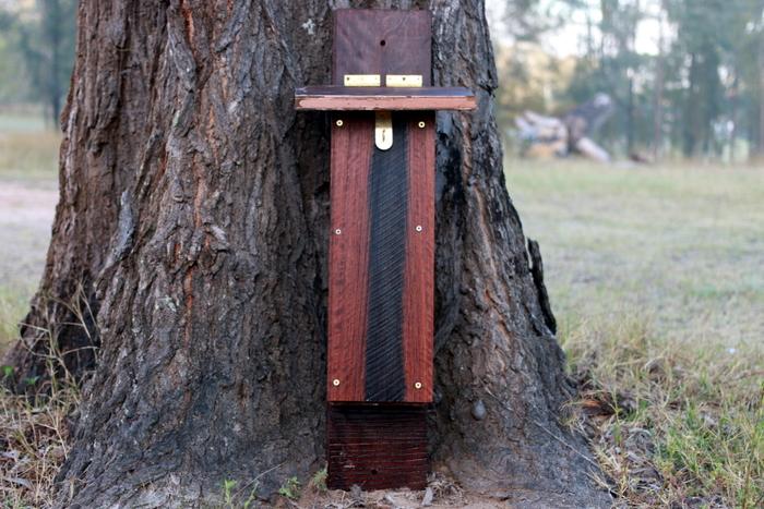 Microbat_roost_box_milkwood