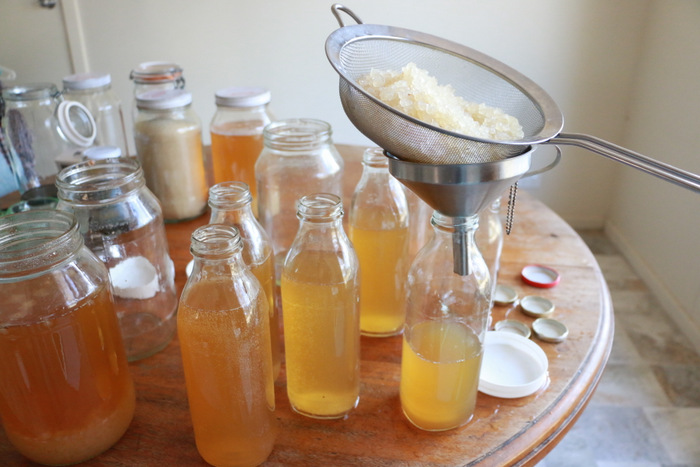 How to make water kefir. Straining grains. Little eco footprints.