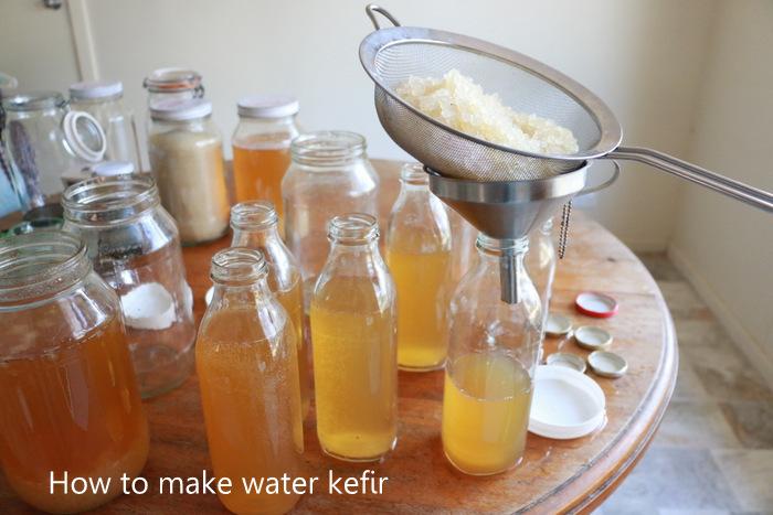 How to make water kefir. Little eco footprints