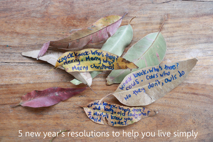New years resolutions to help you live simply. Little eco footprints