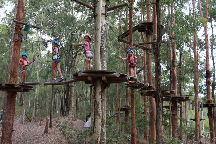 Treetops Adventure Park Newcastle 5. Little eco footprints